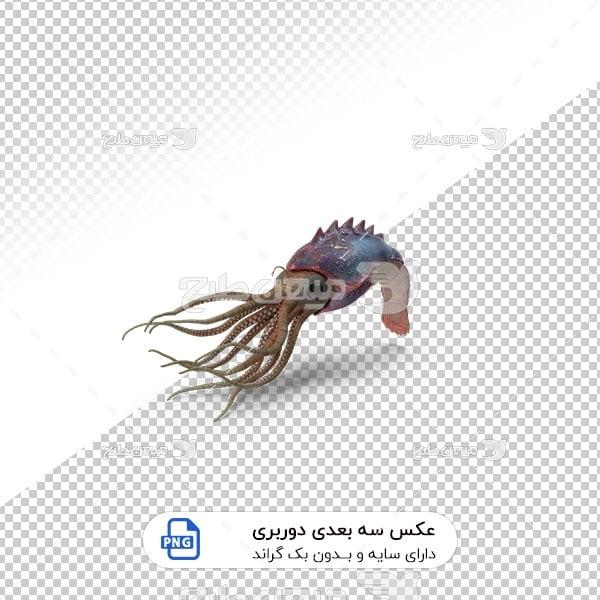 عکس برش خورده سه بعدی شکار اختاپوس