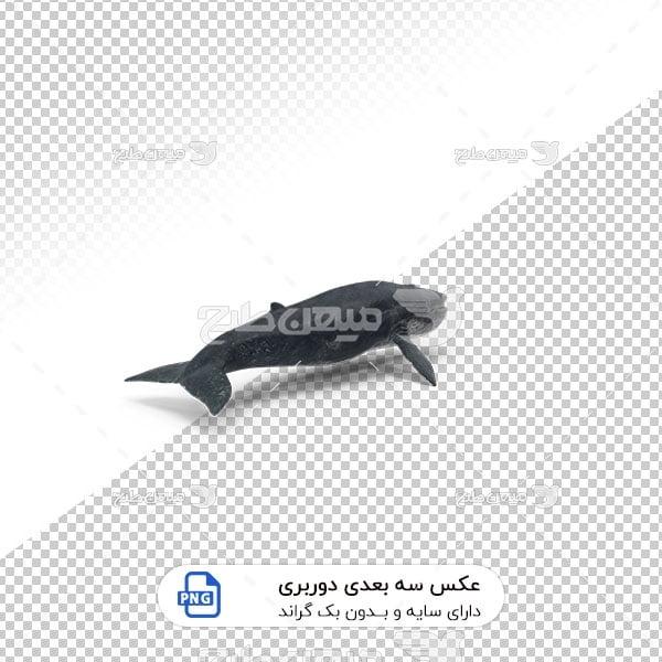عکس برش خورده سه بعدی نهنگ