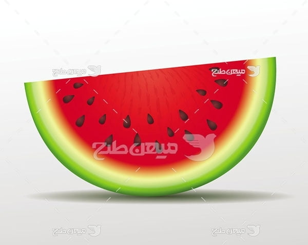 وکتور قاچ هندوانه