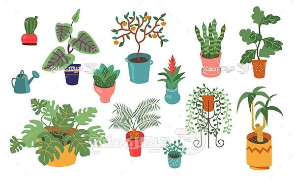 وکتور گیاهان آپارتمانی