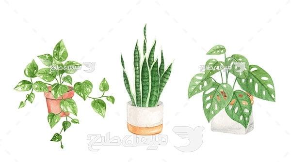 وکتور گیاه آپارتمانی