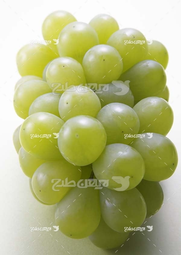 عکس میوه انگور