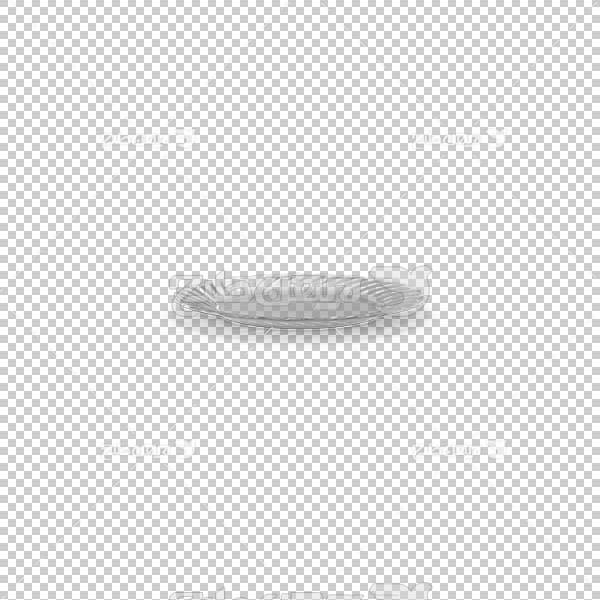 تصویر سه بعدی دوربری بشقاب شیشه ای