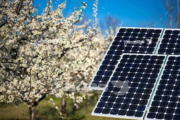عکس پنل خورشیدی