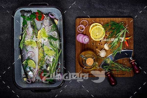 عکس ماهی،گوشت ماهی تزئین شده