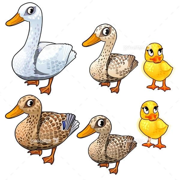 طرح گرافیکی وکتور اردک