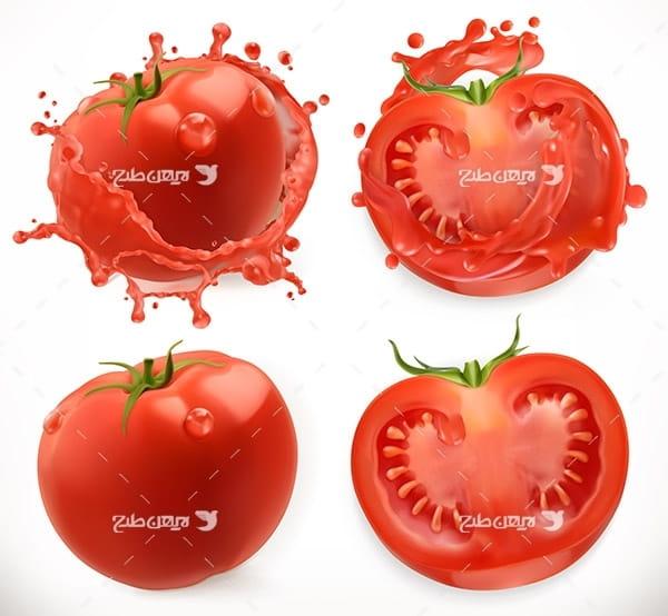 طرح وکتور گرافیکی گوجه فرنگی