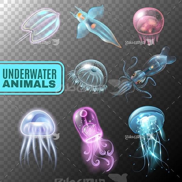 وکتور عروس دریایی