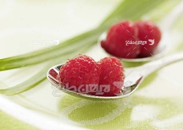 عکس میوه توت