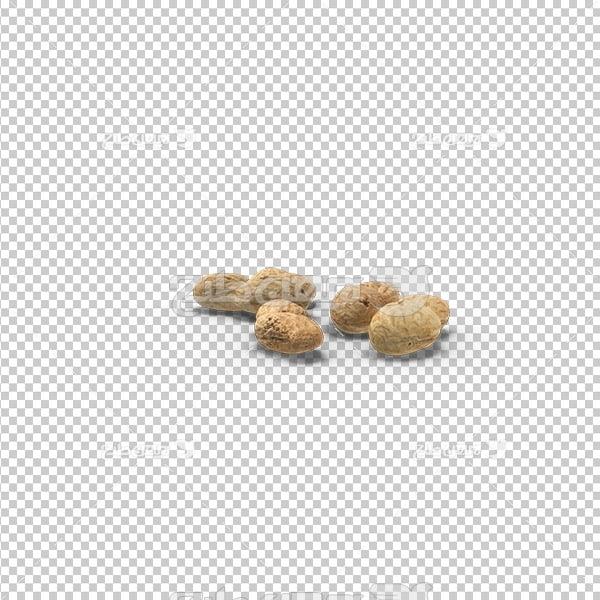 تصویر دوربری سه بعدی بادام زمینی
