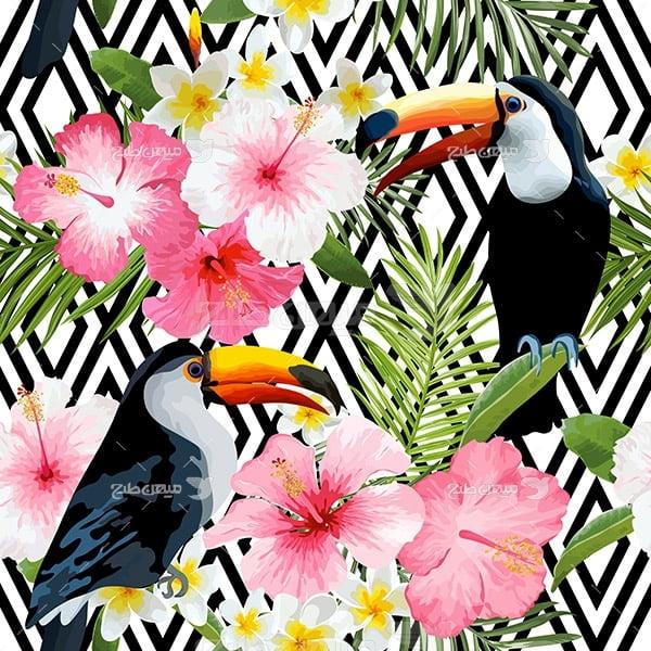 وکتور پرندگان