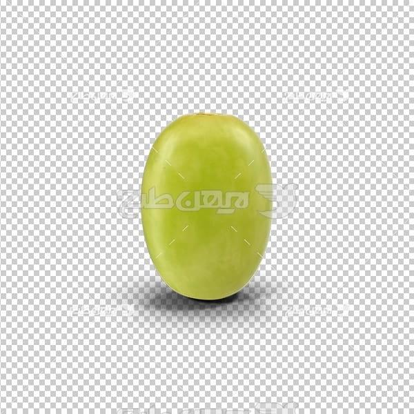 تصویر دوربری سه بعدی زیتون