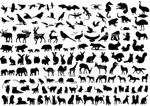 وکتور حیوانات