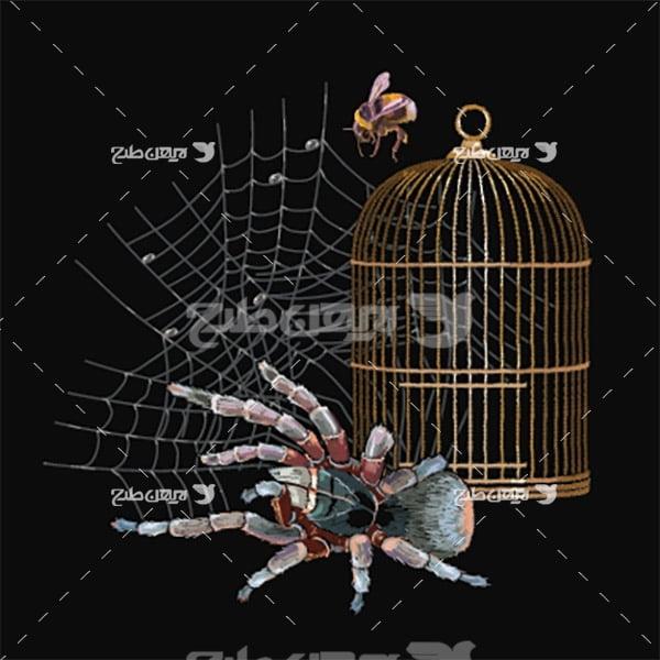 وکتور عنکبوت و قفس