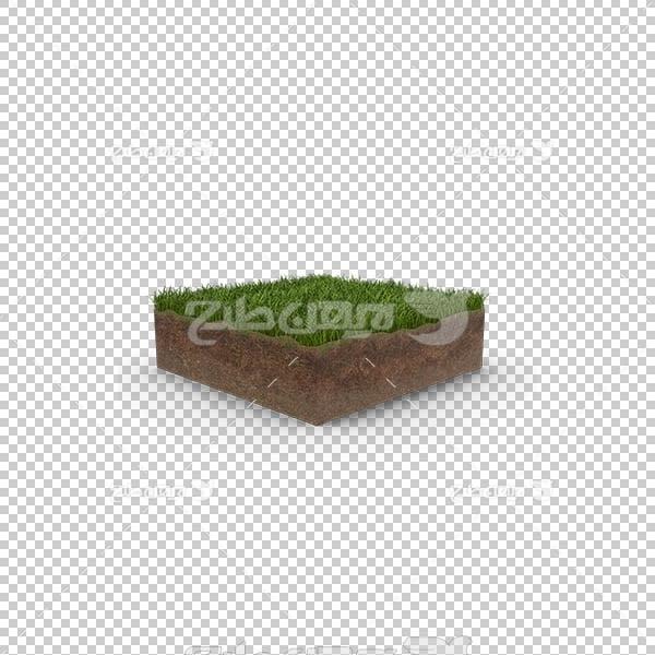 تصویر سه بعدی دوربری چمن