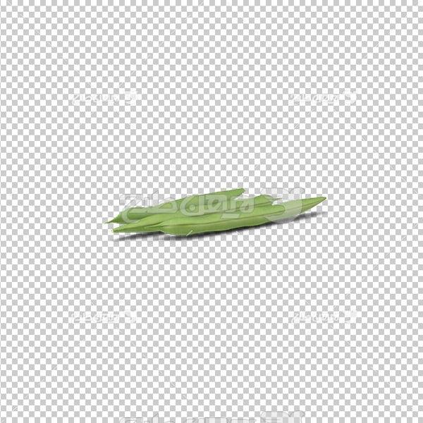 تصویر دوربری سه بعدی لوبیا سبز