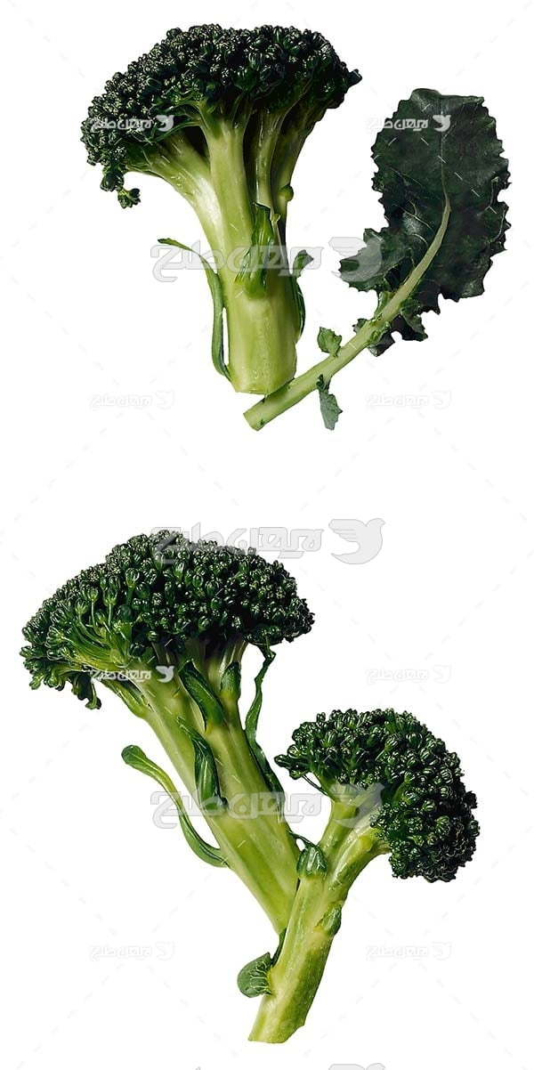 عکس سبزی