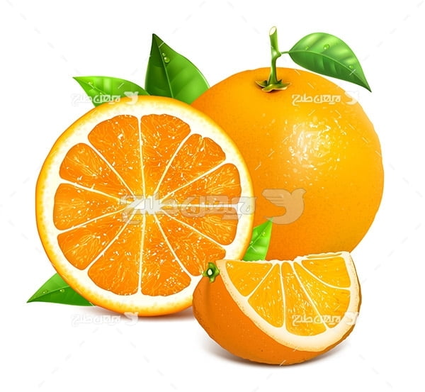 وکتور پرتقال