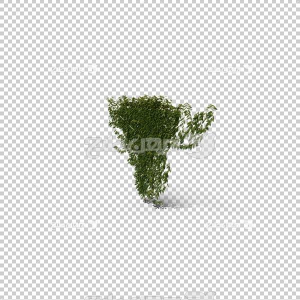 تصویر سه بعدی دوربری بوته گل
