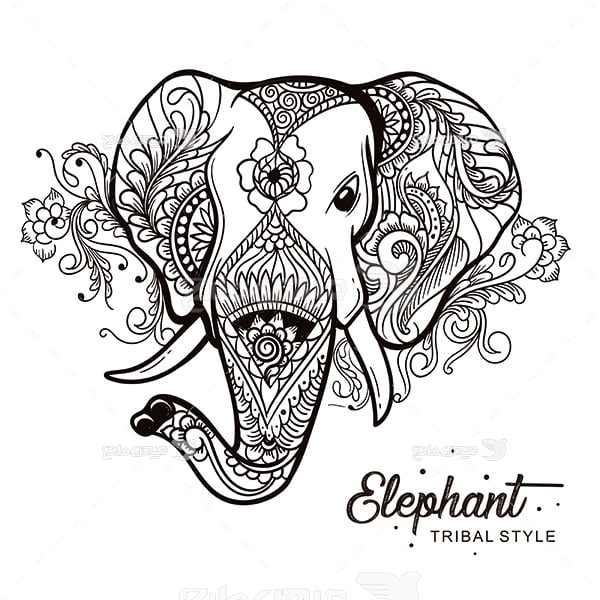 وکتور فیل
