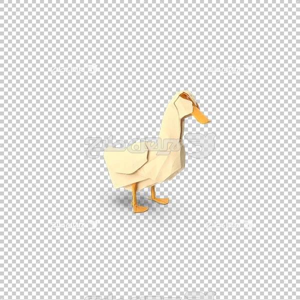 تصویر سه بعدی دوربری اردک