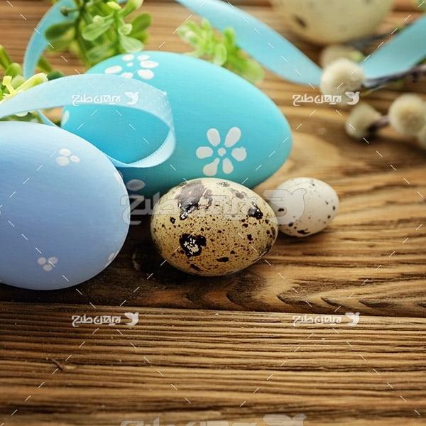 بک گراند تخم مرغ و بوقلمون
