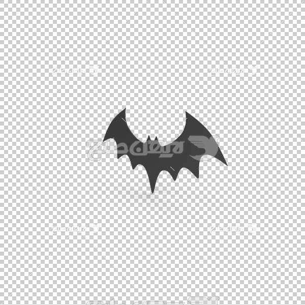 تصویر سه بعدی دوربری خفاش