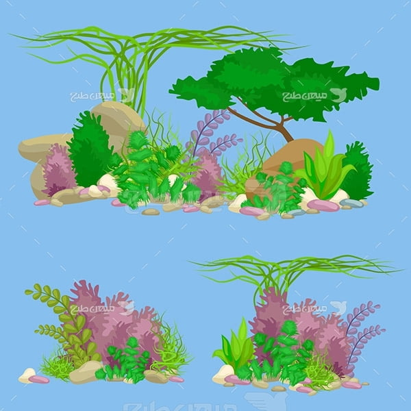 وکتور گیاهان دریایی