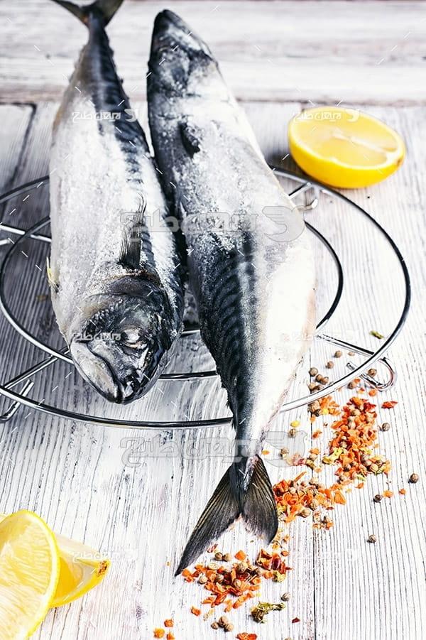 ماهی،گوشت ماهی,غذای ماهی,ماهی کبابی
