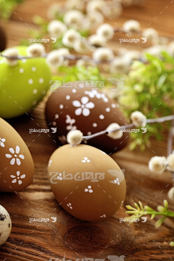 تصویر تخم مرغ تزئین شده