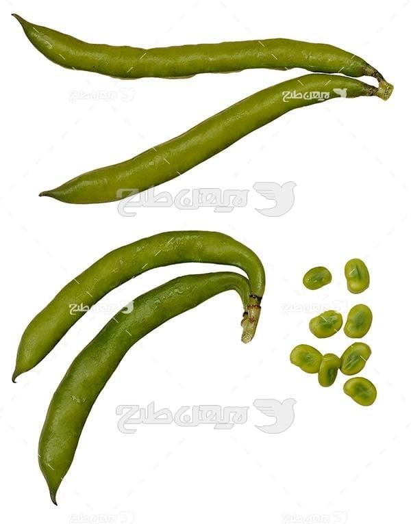 عکس سبزی لوبیا سبز