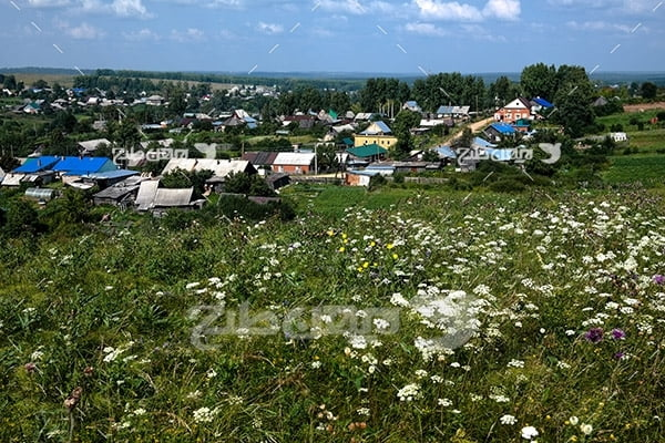 عکس منظره گل و گیاه و خانه ساختمان