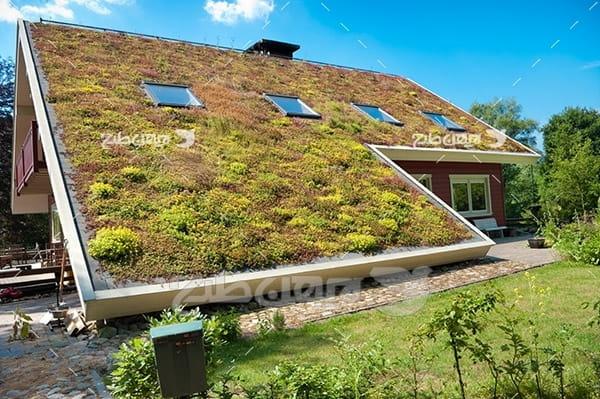 سقف خانه