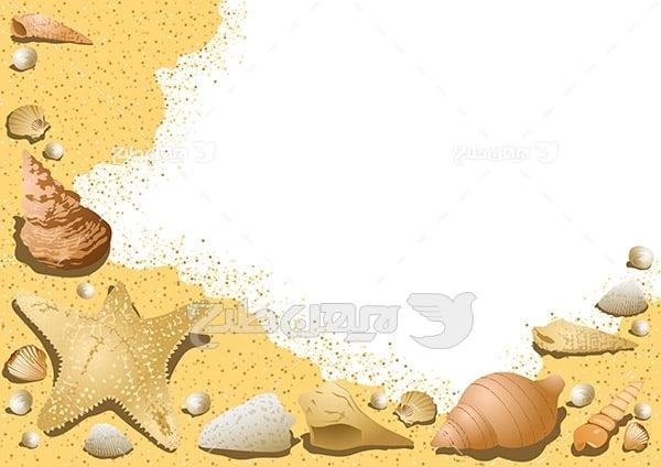 وکتور انواع صدف