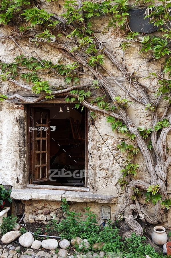 عکس پنجره خانه قدیمی در بین درختان