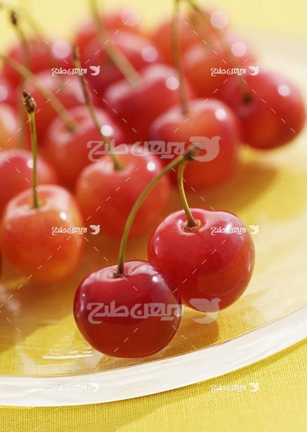 عکس میوه گیلاس