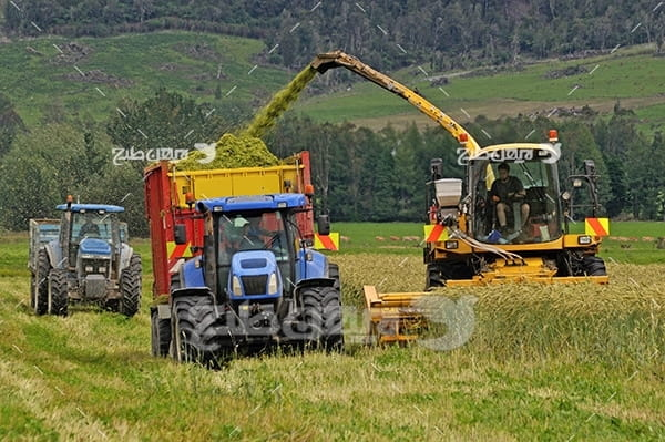 عکس برداشت محصولات کشاورزی