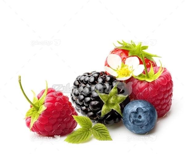 عکس میوه توت و توت فرنگی