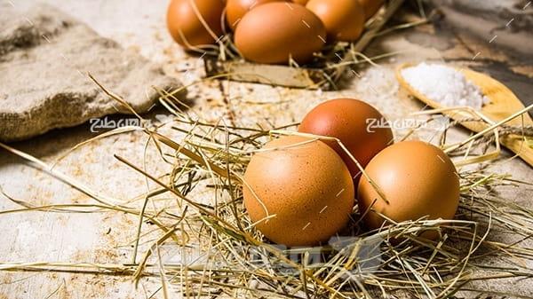 بک گراند تخم مرغ