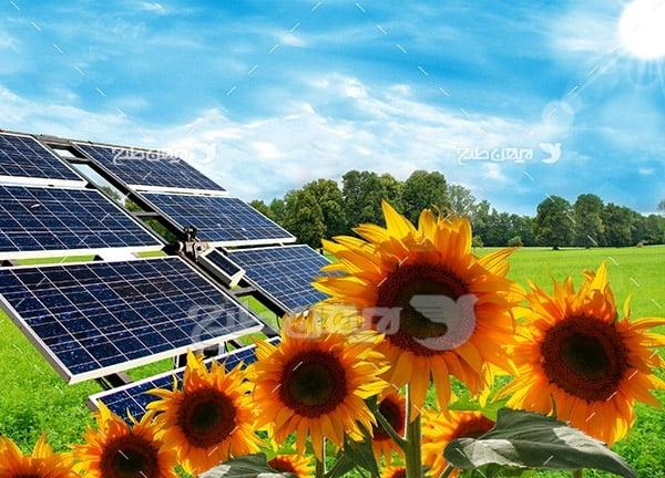 پنل خورشیدی و گل آفتابگردان