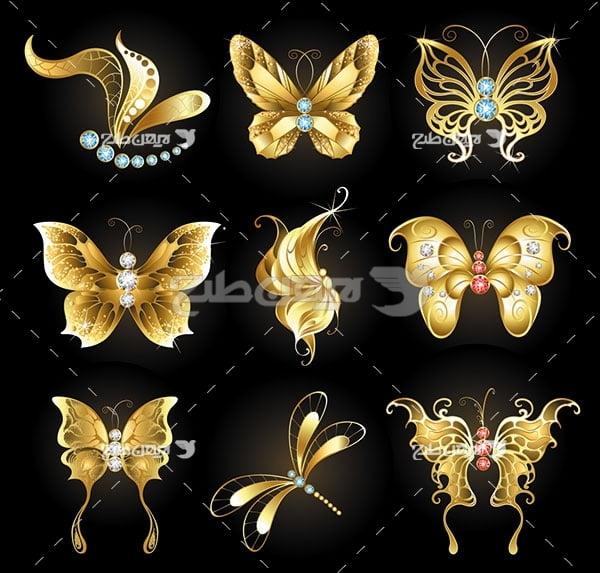 طرح وکتور پروانه طلایی