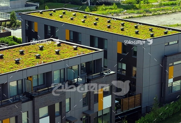 گلخانه در سقف