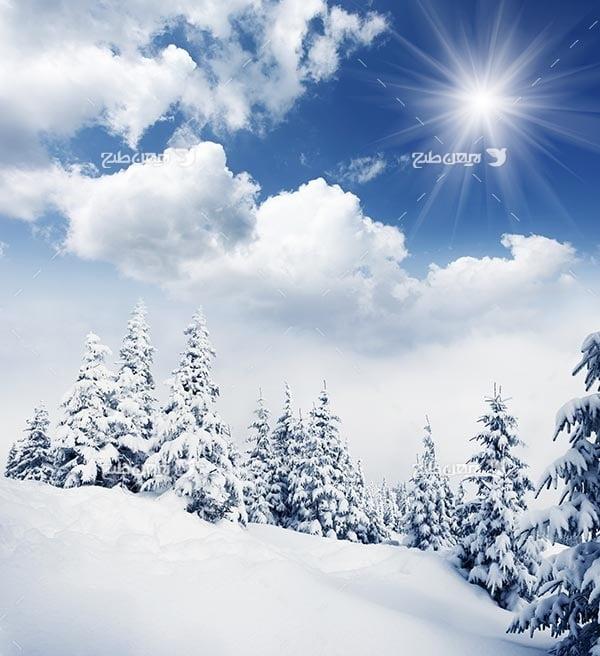 تصویر منظره برفی و برف و درخت کاج، ابر و آسمان و خورشید