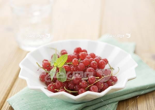 عکس میوه آلبالو