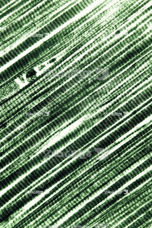 عکس ذرات میکروسکوبی