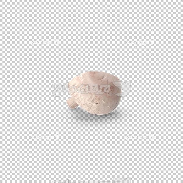 تصویر سه بعدی دوربری قارچ