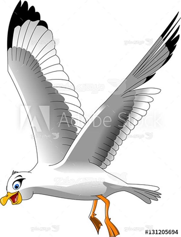 وکتور مرغ دریایی