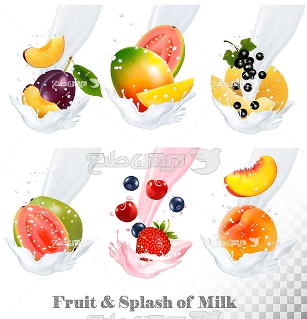 وکتور میکس شیر و میوه جات