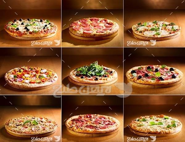 انواع پیتزا و فست فود
