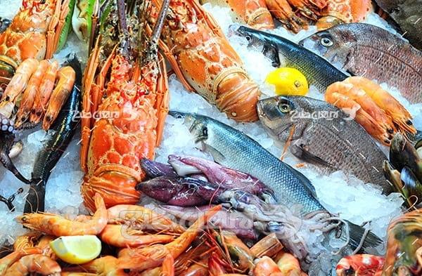 عکس ماهی،گوشت ماهی و میگو  ، یخ